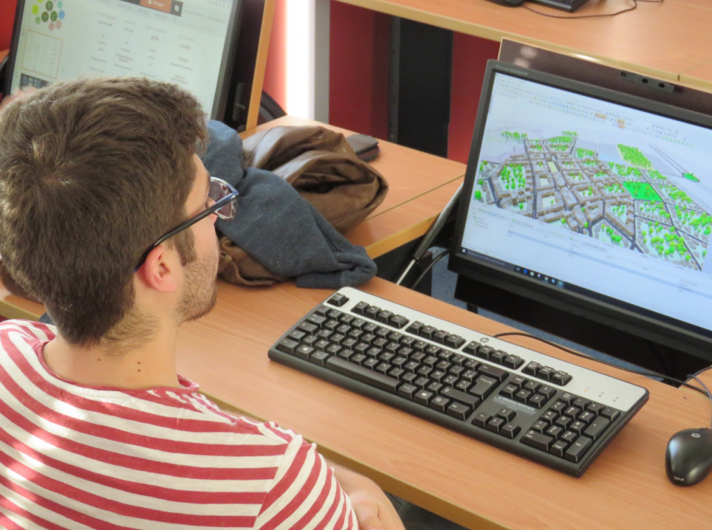 IMREDD student using CityCAD